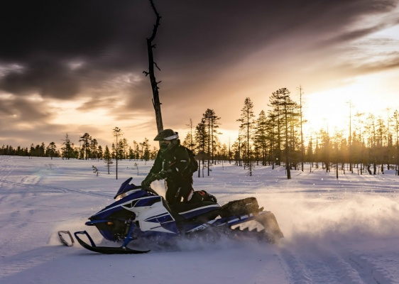 Best Activities in Lapland