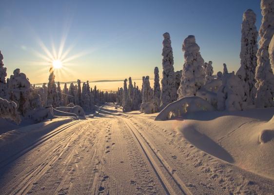 lapland-nature