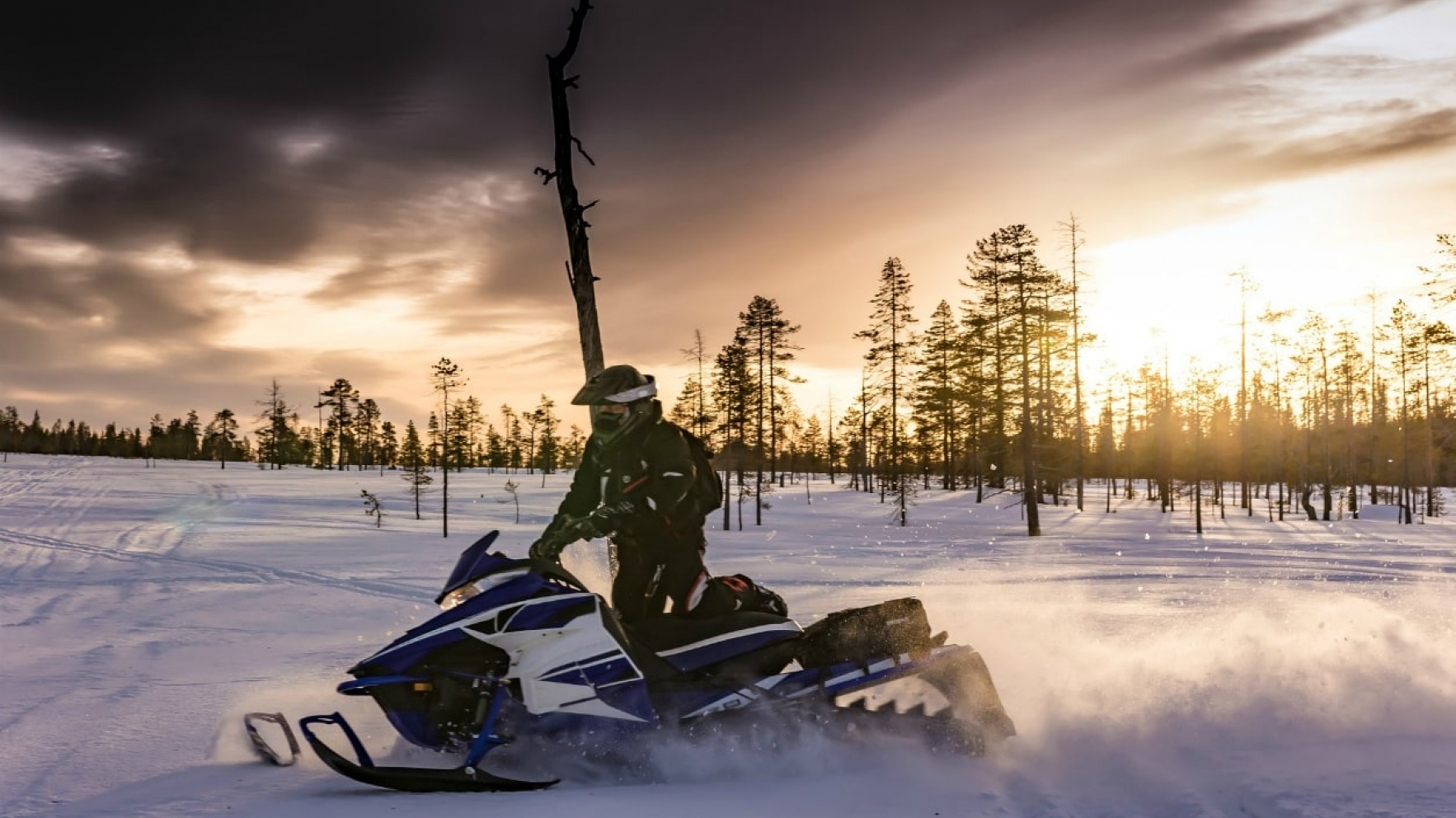 Best Activities in Lapland